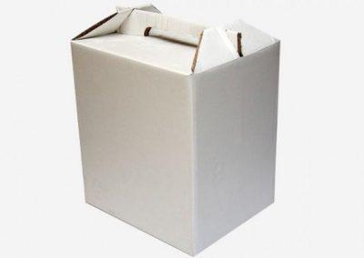 Caja tipo Maletín